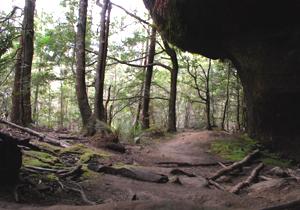 Indigenous Cave